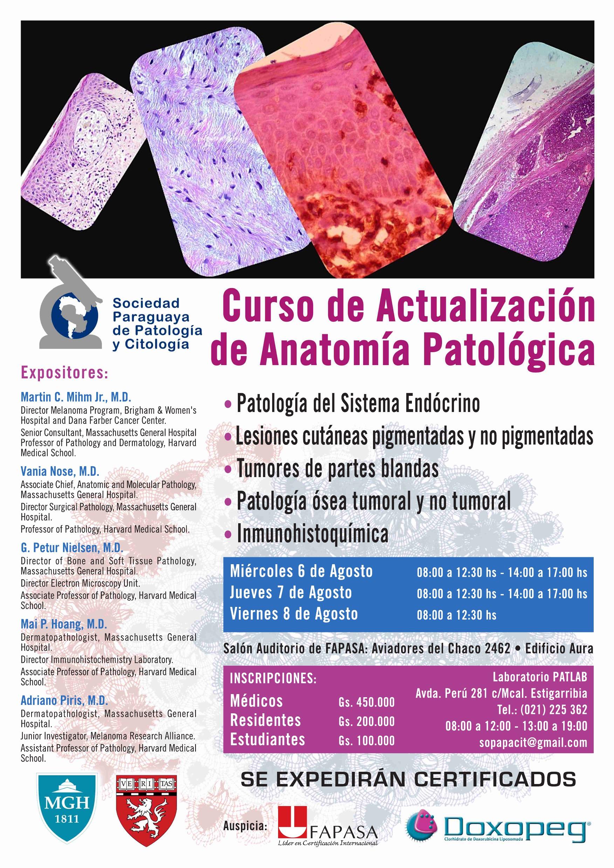Curso de Actualización de Anatomía Patológica